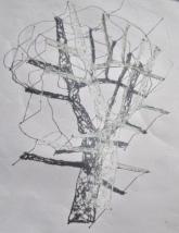 arbolgrassy7 blanco rosario belda